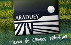 www.aradueycampos.org Diseño web en Castilla y Leon