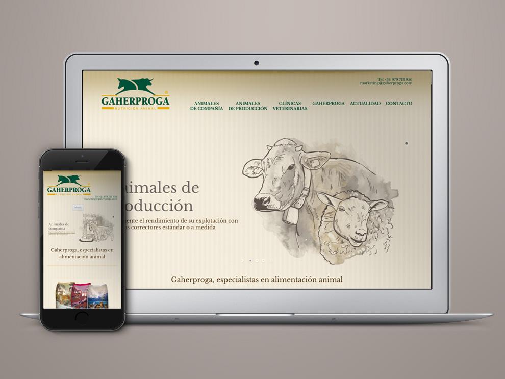 Gaherproga Palencia, diseño web