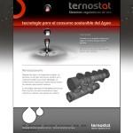 Diseño web Palencia – Ternostat.com