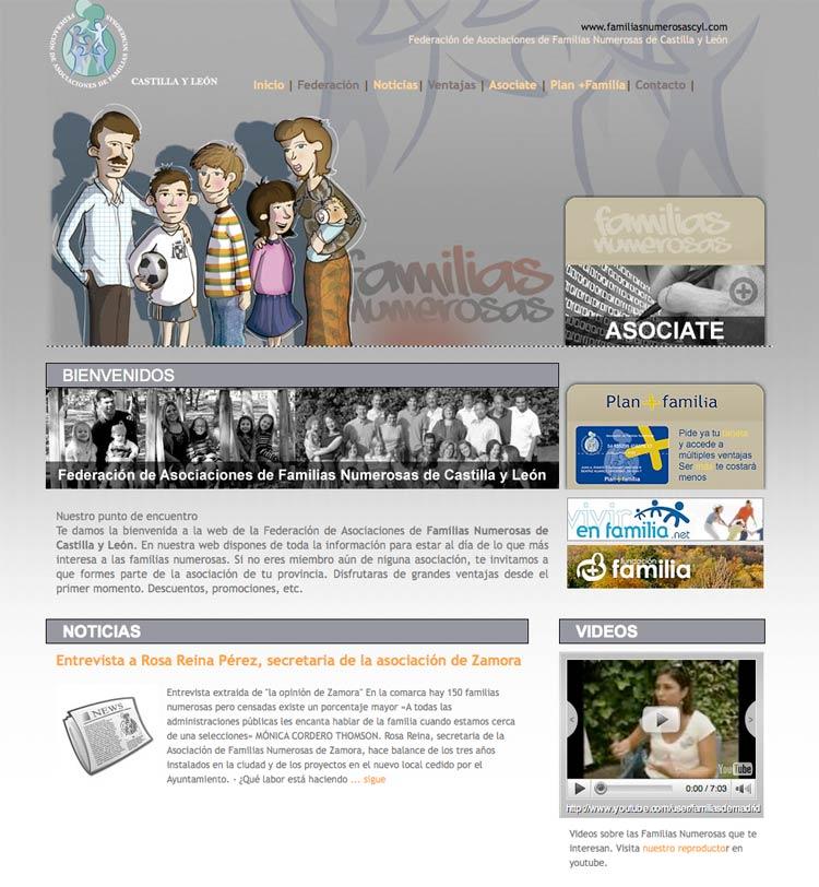 Diseño de páginas web en Valladolid y Palencia, Familias Numerosas Cyl